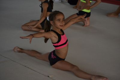 Gymnastics Camp. High - level formation through gymnastics -